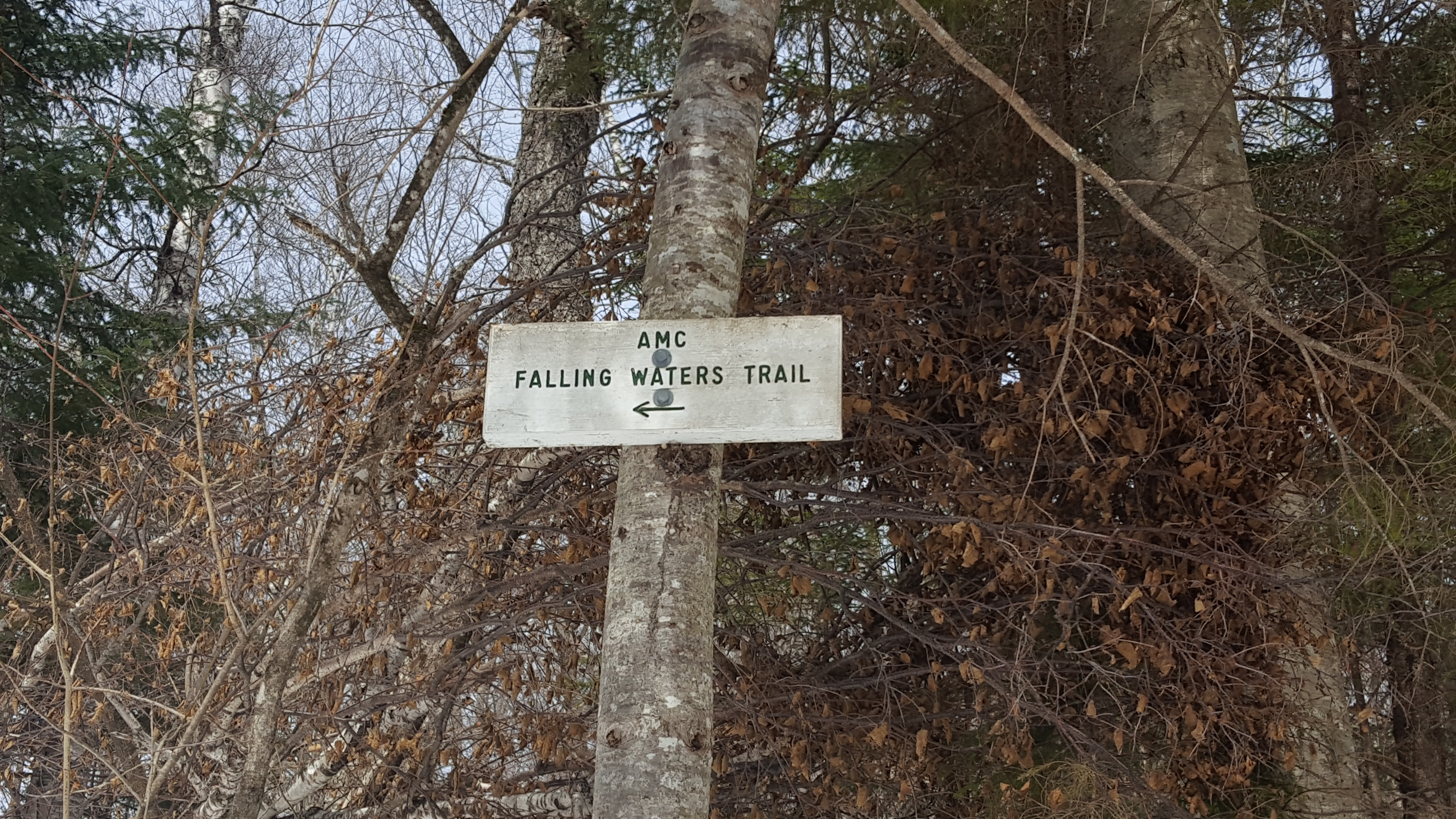 AMC Falling Waters Trail sign.
