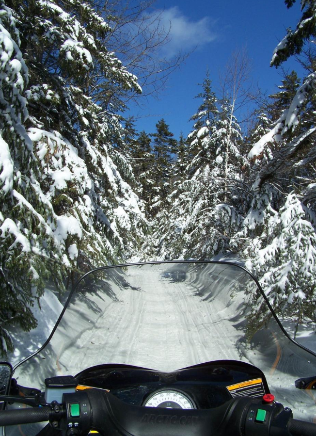 Snowmobile on a forest trail